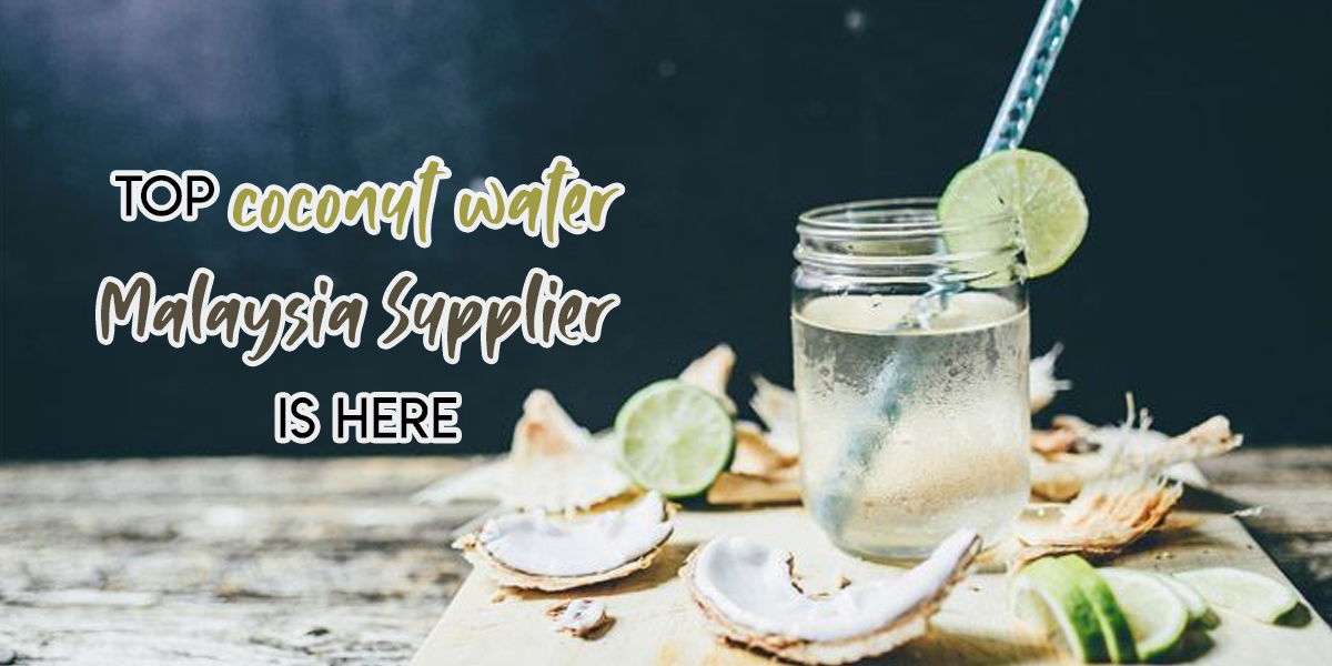 Top Coconut Water Malaysia Supplier is Here